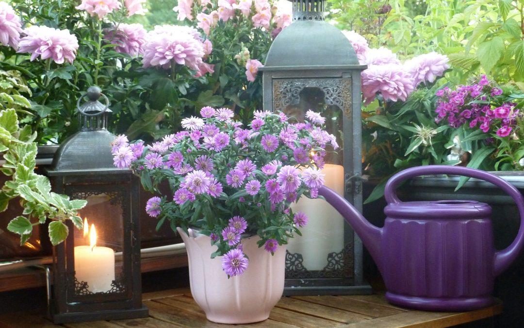 Comment fleurir sa terrasse ou son balcon ?